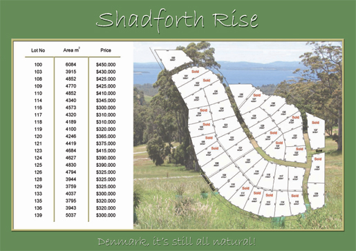 Shadforth Rise Flyer